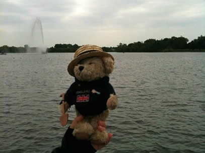 Paddling bear at a practice session.