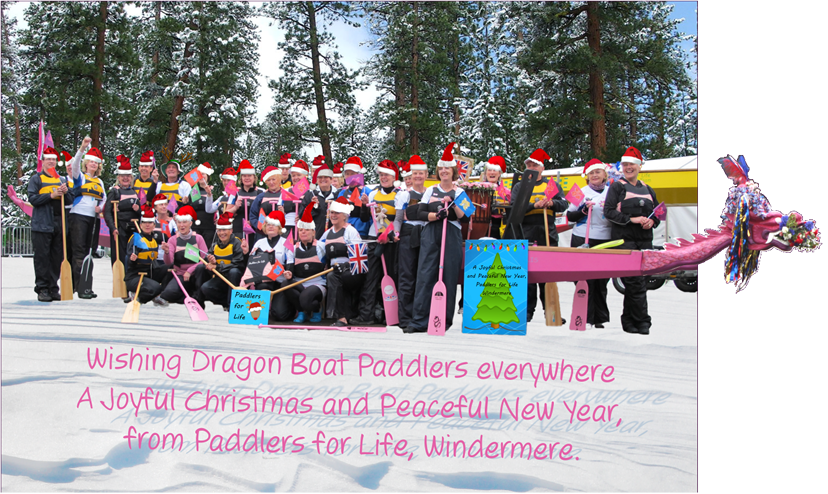 Happy Christmas from Paddlers for Life Windermere .